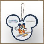 TDR SOARING Patch Badge