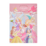 DSJ Disney Princess Schedule Book 2020 B6 (Friends)