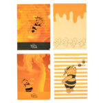 DSJ Hunny Funny Sunny Winnie The Pooh Clear File set