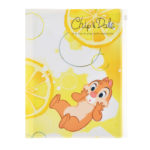 DSJ Soda Chip and Dale Clear File set
