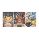 PCO Observation Notebook A4 clear file set of 3