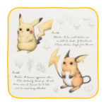 PCO Observation Notebook Hand towel Pikachu Raichu