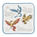 PCO Observation Notebook Hand towel Articuno Zapdos Moltres