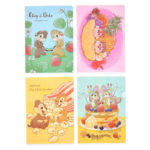 DSJ Chip and Dale Clear Folder Set (Foodie)