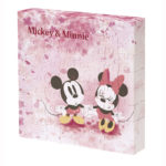 DSJ Mickey and Minnie campus puzzles (Flower Shower)