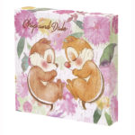 DSJ Chip and Dale campus puzzles (sleep)