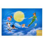 DSJ PeterPan You can fly Postcard