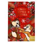 DSJ Holiday Chip and Dale Postcard