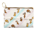 DSJ Chip and Dale Tisssue and Mask Pouch