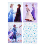 DSJ Frozen 2 Anna and Elsa Clear File set