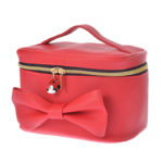 DSJ Minnie Day 2020 Vanity Pouch