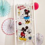 BEL Disney Character Face Towel Mickey and Minnie