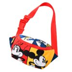 DSJ Color Block Body bag Mickey and Friends
