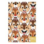 DSJ Postcard Chip and Dale Funny Faces