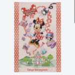 TDR NEW DREAM MORE FUN  Minnies Style Studio Postcard