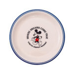 TDR Where Dreams Come True Plate 16cm Mickey Mouse